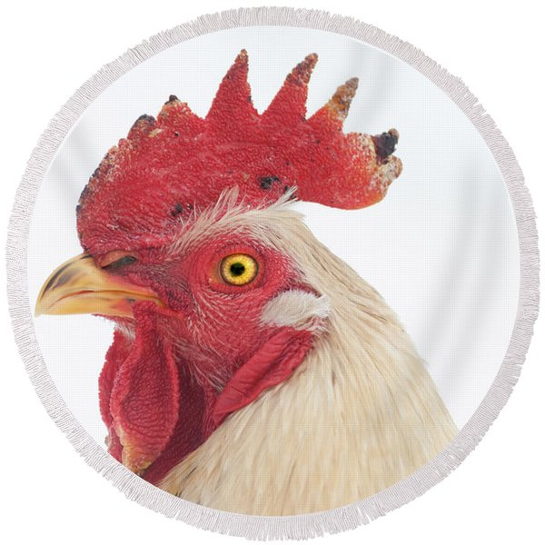 Rooster Named Spot Round Beach Towel