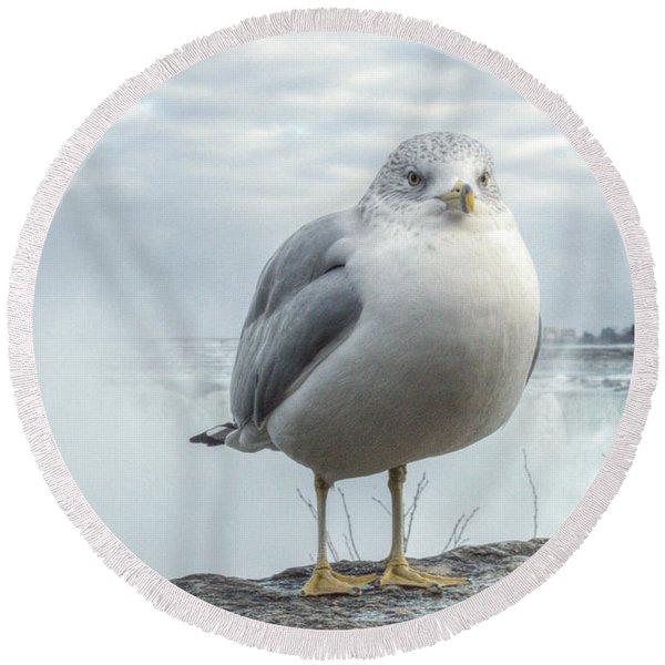 Seagull Model Round Beach Towel