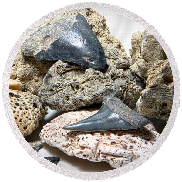 Sharks Teeth And Coral Round Beach Towel