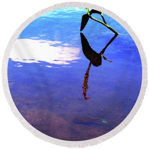 Silhouette Aquatic Fish Round Beach Towel