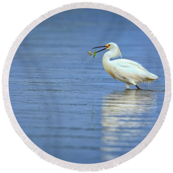 Snowy Egret At Dinner Round Beach Towel