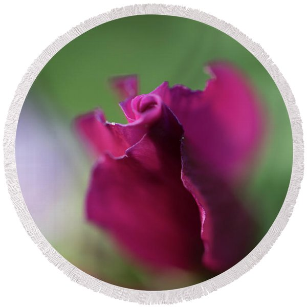 Spinning With Rose Round Beach Towel