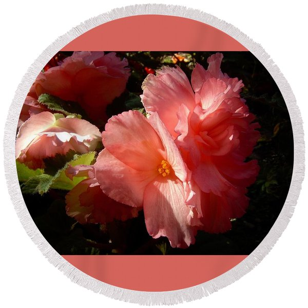 Splash Of Begonia Round Beach Towel