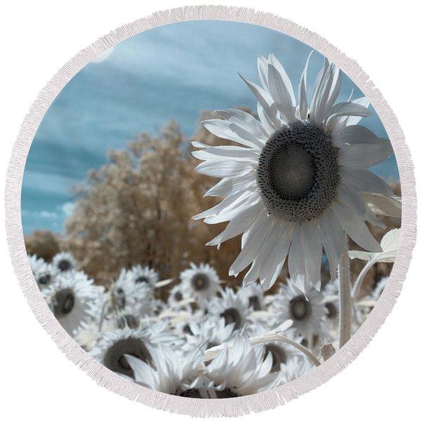 Sunflower Infrared  Round Beach Towel