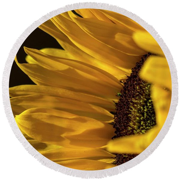 Round Beach Towel featuring the photograph Sunny Too By Mike-hope by Michael Hope