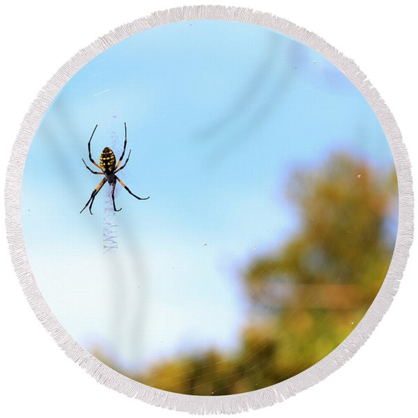 Suspended Spider Round Beach Towel