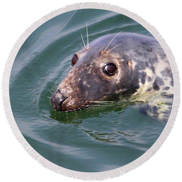 Sweet Seal Round Beach Towel