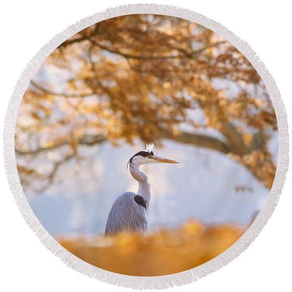The Blue Heron And The Red Tree Round Beach Towel
