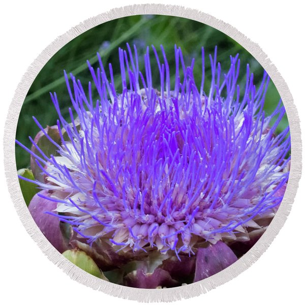 Round Beach Towel featuring the photograph The Loveliness Of An Artichoke by Mary Lee Dereske
