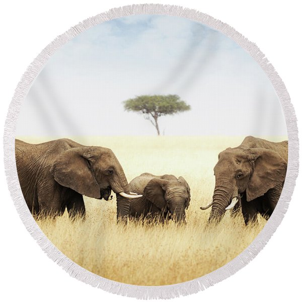 Three Elephant In Tall Grass In Africa Round Beach Towel