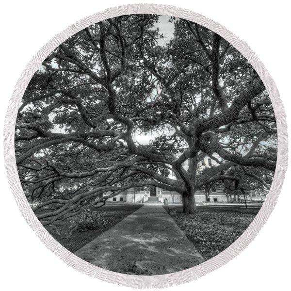 Under The Century Tree - Black And White Round Beach Towel