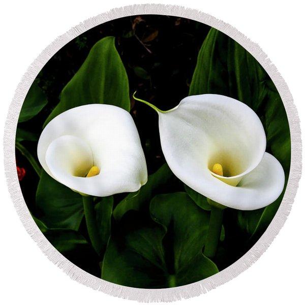 White Calla Lily Round Beach Towel