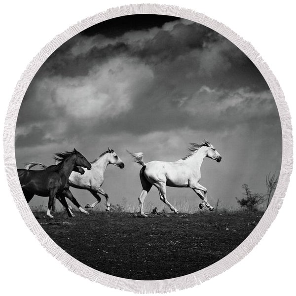 Wild Horses - Black And White Round Beach Towel