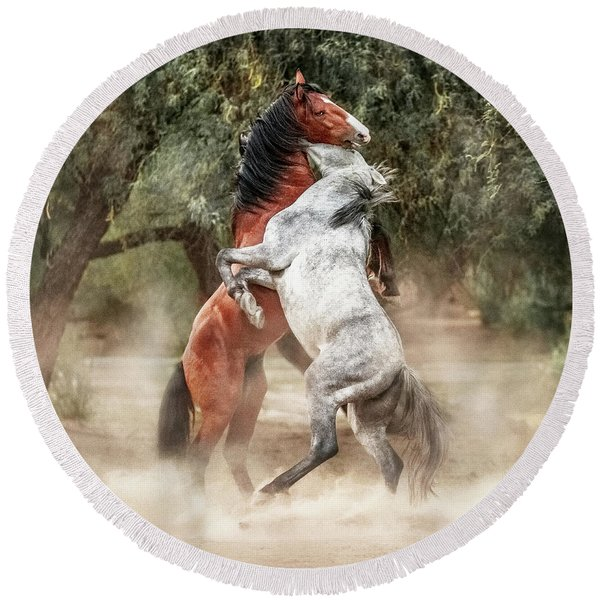 Wild Horses Rearing Up Play Fighting Round Beach Towel