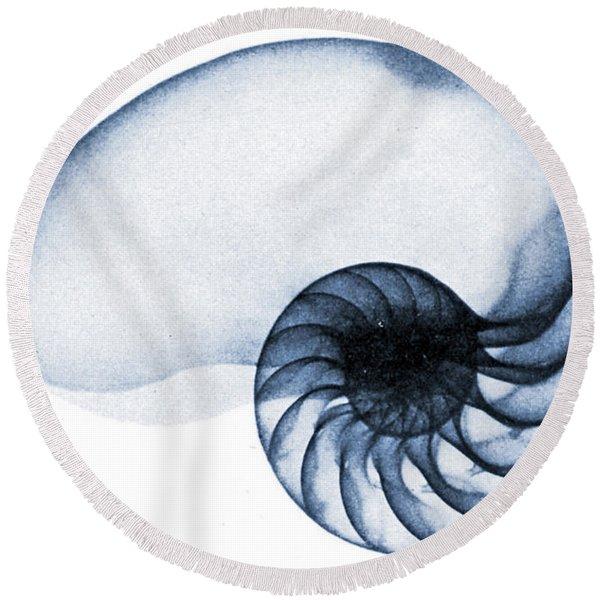 X Ray Of A Nautilus Round Beach Towel