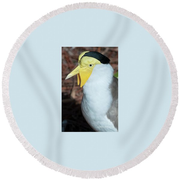 Yellow Headed Bird Round Beach Towel