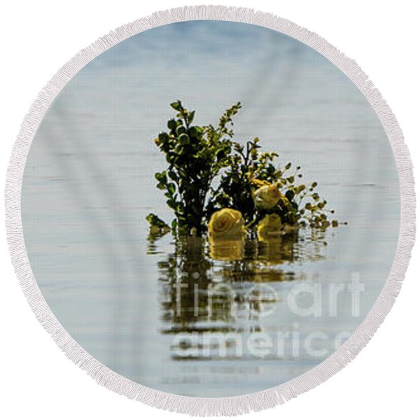 Yellow Roses In The Distance At The Beach Round Beach Towel