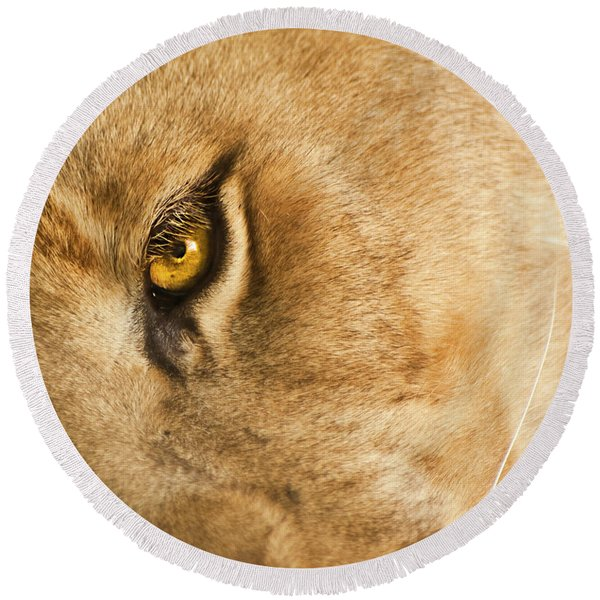 Round Beach Towel featuring the photograph Your Lion Eye by Carolyn Marshall