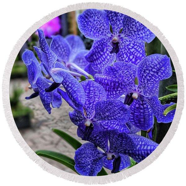 Deep Purple Orchid Round Beach Towel