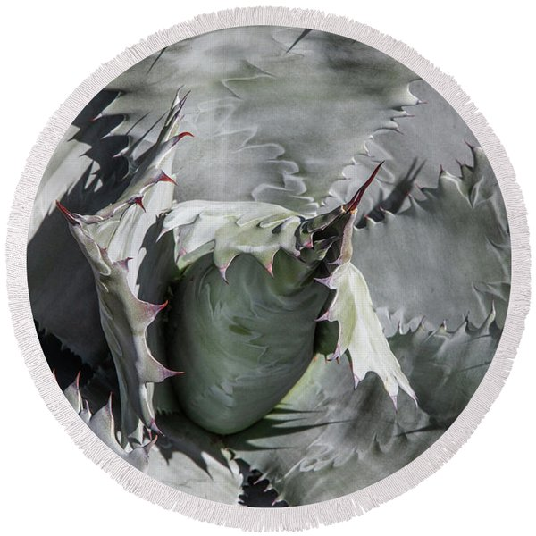 Round Beach Towel featuring the photograph Agave Universe by Lon Dittrick