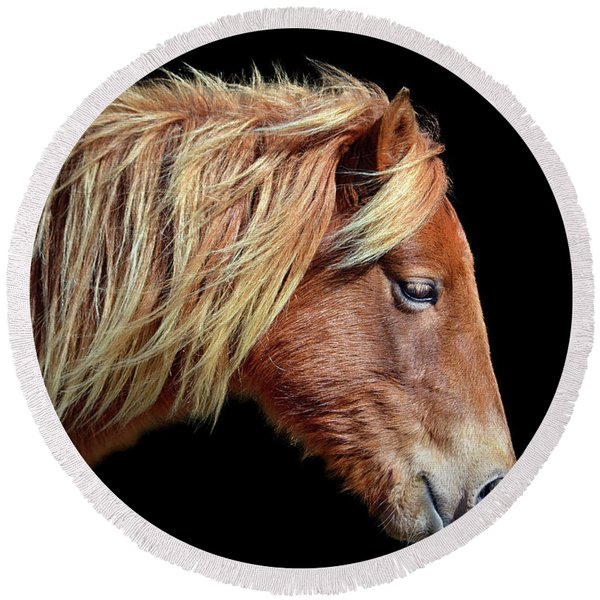 Assateague Pony Sarah's Sweet Tea Portrait On Black Round Beach Towel