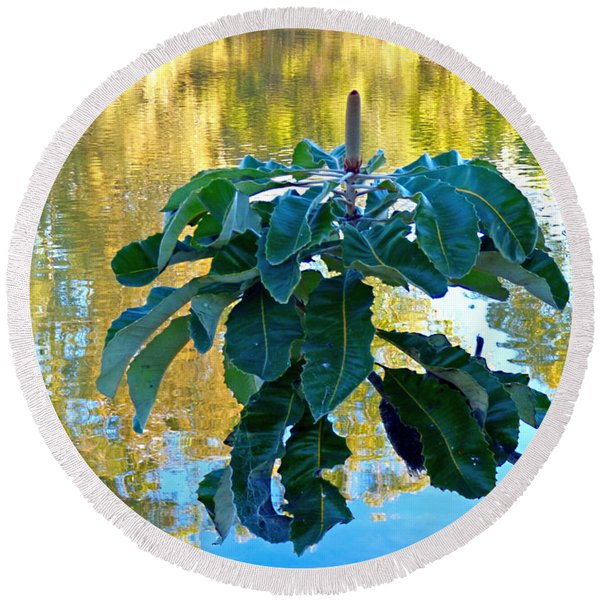 Banksia Reflections  Round Beach Towel