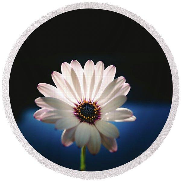 Beautiful And Delicate White Female Flower Dark Background Illum Round Beach Towel