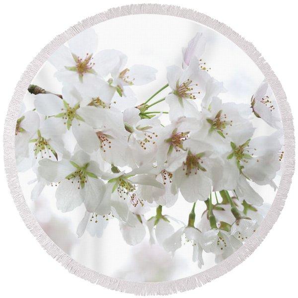 Beautiful White Cherry Blossoms Round Beach Towel