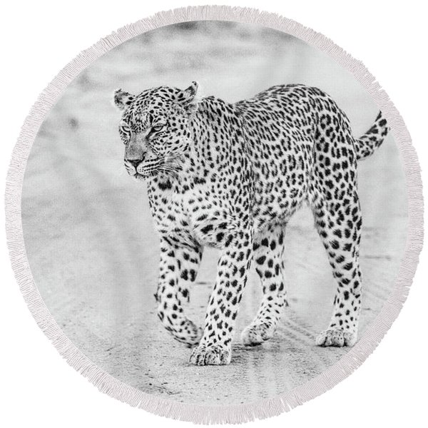 Black And White Leopard Walking On A Road Round Beach Towel
