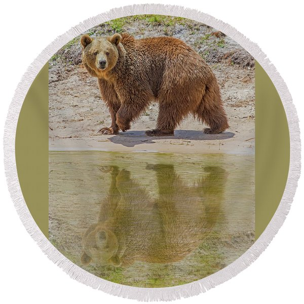 Brown Bear Reflection Round Beach Towel