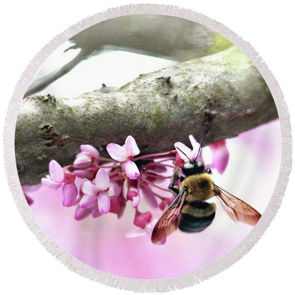 Bumblebee On Redbud Flower Round Beach Towel