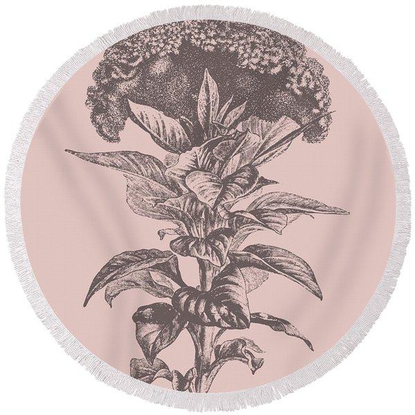 Celosia Blush Pink Flower Round Beach Towel