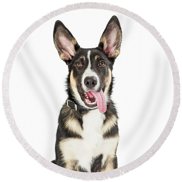 Closeup Cute Puppy Tongue Hanging Out Round Beach Towel