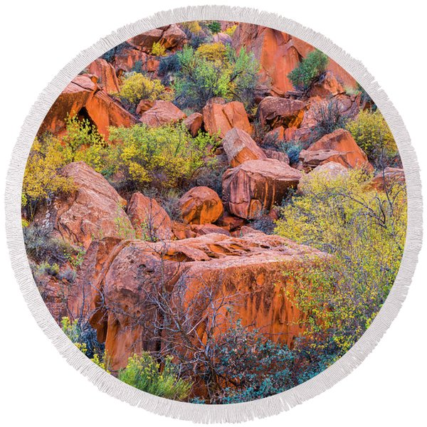 Colors Of Autumn In Small Shrubs Amidst Round Beach Towel