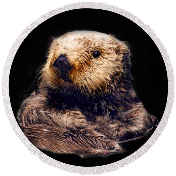 Cute Sea Otter Round Beach Towel