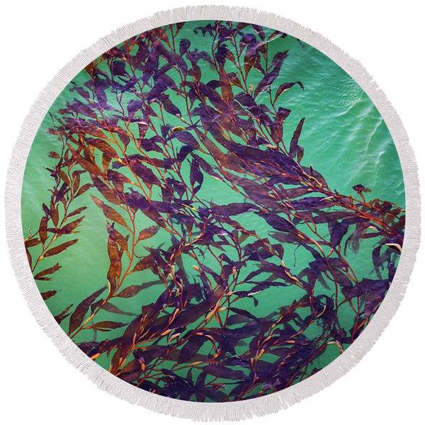Floatin Kelp I Color Round Beach Towel