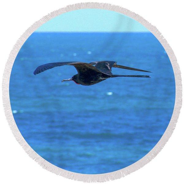 Frigatebird Round Beach Towel