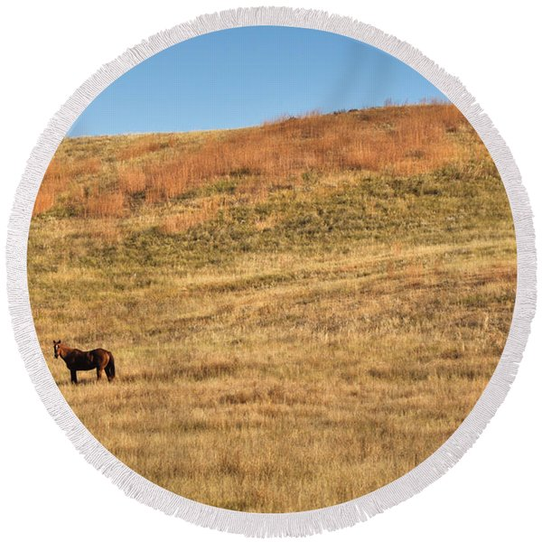 Round Beach Towel featuring the photograph Grazing In The Grass by Carl Young