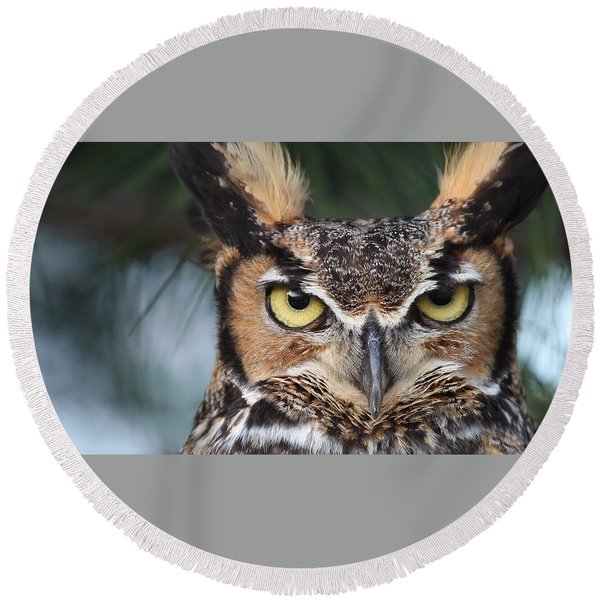 Great Horned Owl Eyes 51518 Round Beach Towel