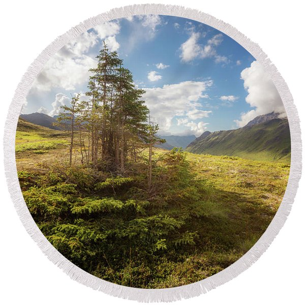 Round Beach Towel featuring the photograph Haiku Forest by Tim Newton