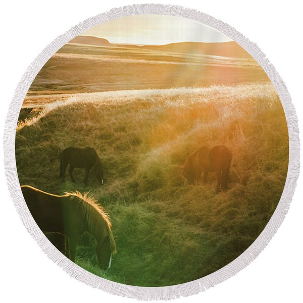 Icelandic Landscapes, Sunset In A Meadow With Horses Grazing  Ba Round Beach Towel
