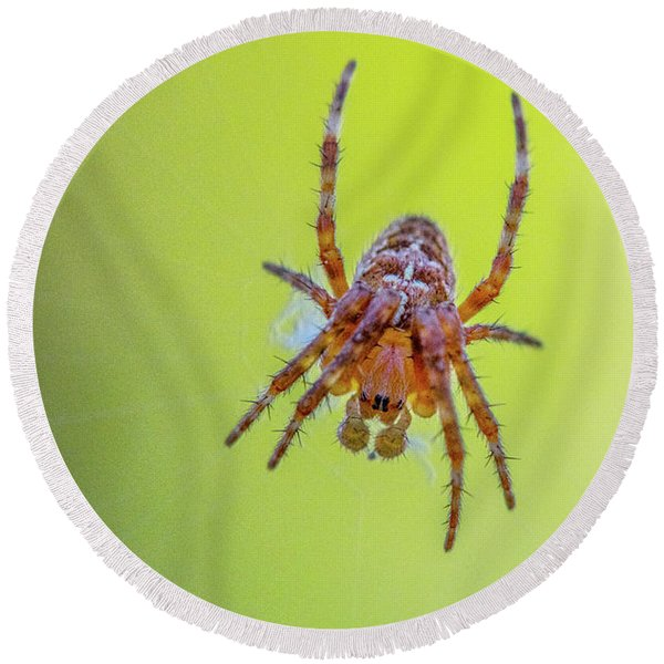 Itsy Bitsy Spider 2 Round Beach Towel