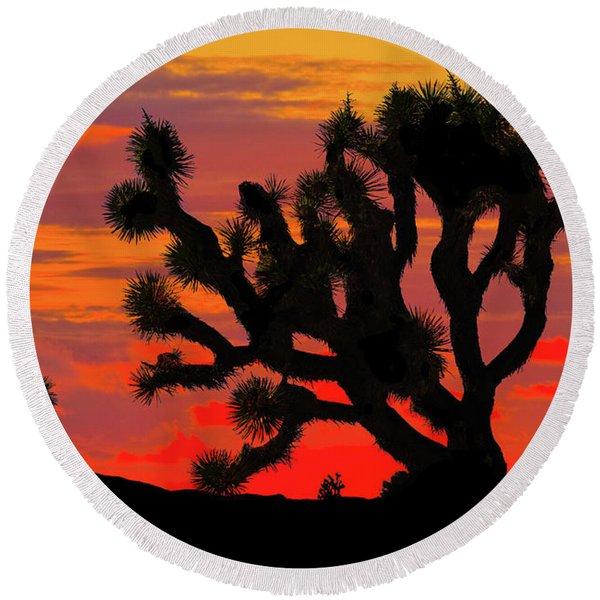 Joshua Tree At Sunset Round Beach Towel