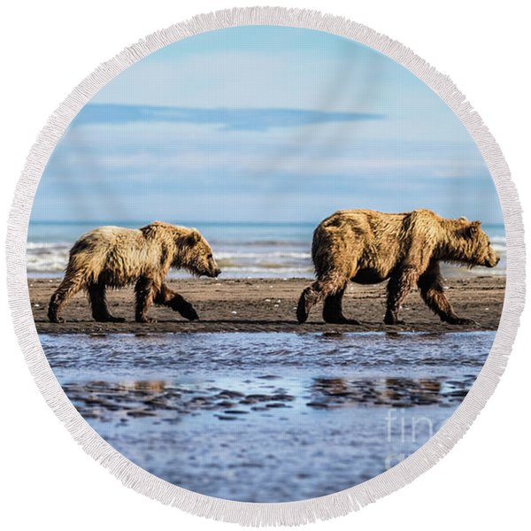 Mama Bear And Her Two Cubs On The Beach. Round Beach Towel