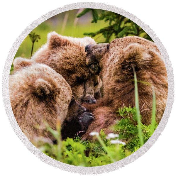 Mama Bear Nursing Her Two Cubs, Lake Clark National Park, Alaska Round Beach Towel