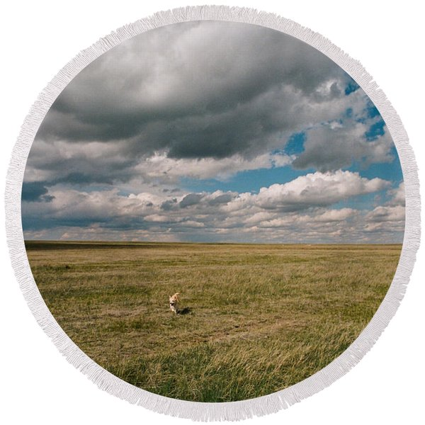 Round Beach Towel featuring the photograph One Happy Dog by Carl Young
