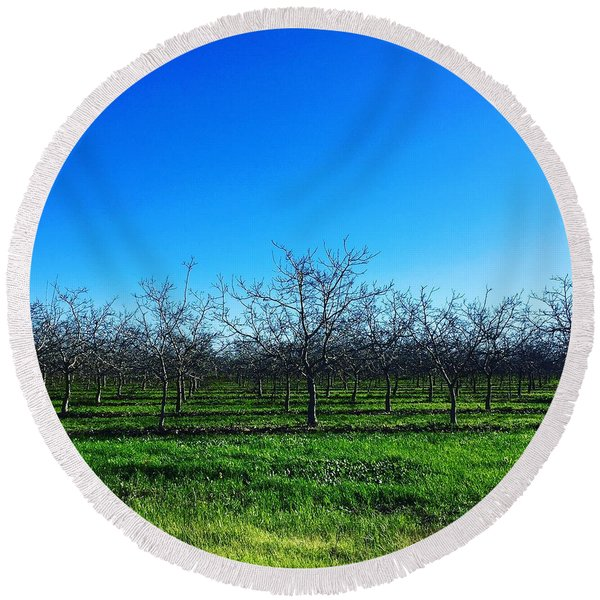 Orchard Trees In Blue Round Beach Towel
