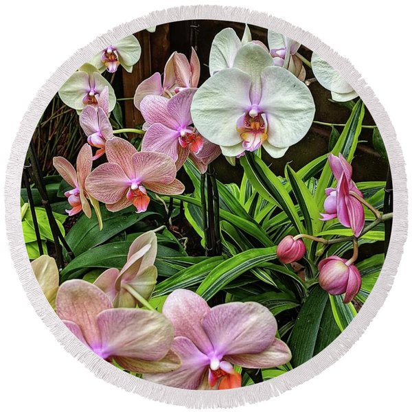 Pink And  White Orchids Round Beach Towel