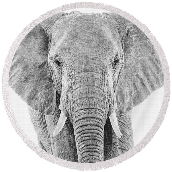 Portrait Of An African Elephant Bull In Monochrome Round Beach Towel