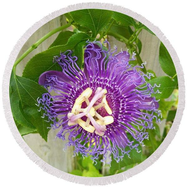 Purple Passionflower Round Beach Towel